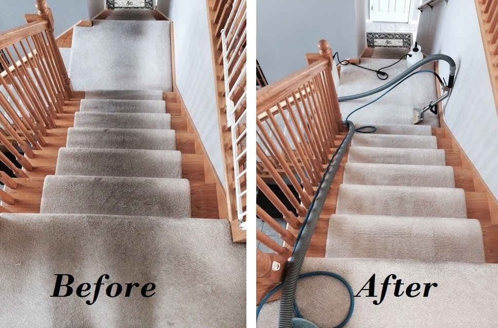 carpet cleaning in toronto 29 any size room